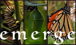 emerge series